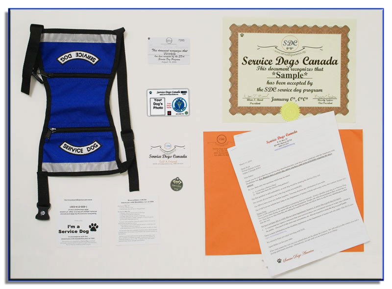 Base Service Dog Package Service Dogs Canada