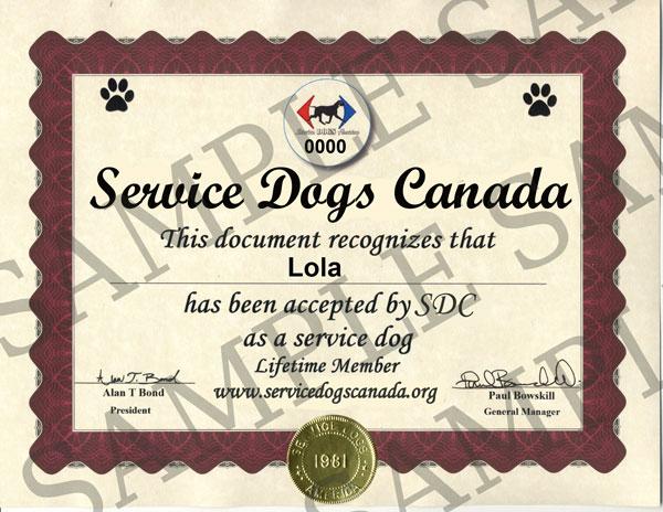 service dog certificate - service dogs canada